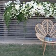 Rattan Love Chair - Lovestruck Wedding Hire