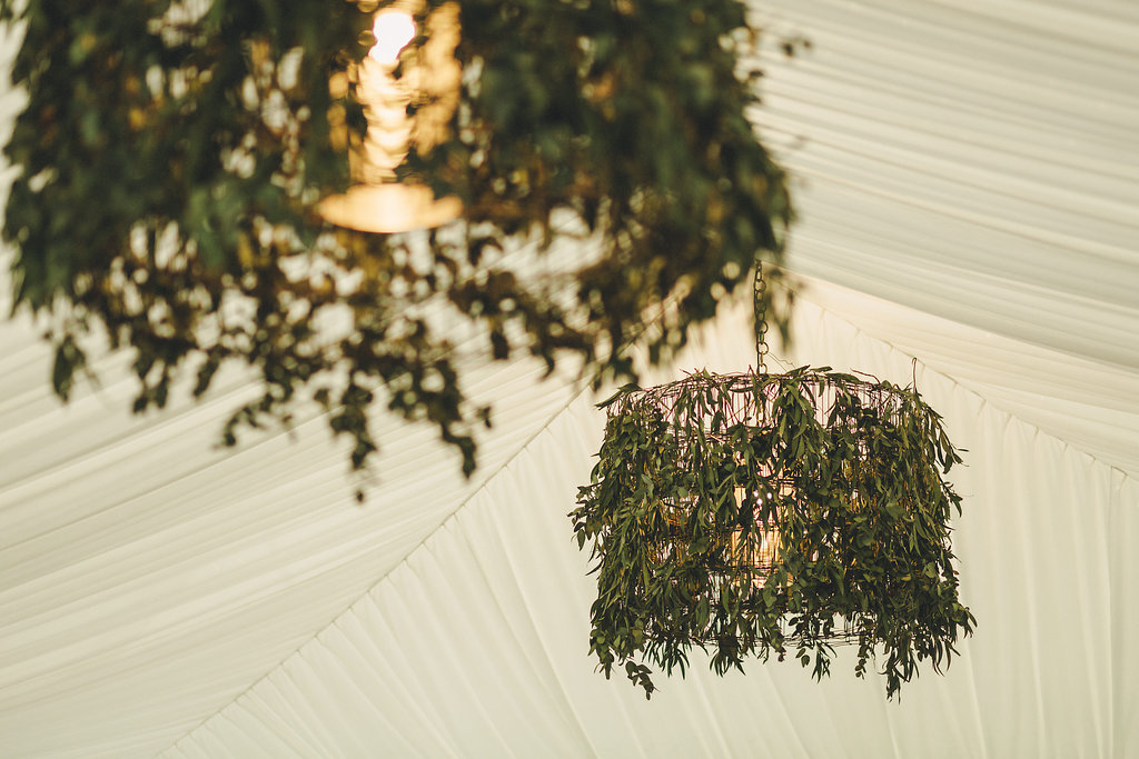 Sally and Lachlan's Upper Brookfield Wedding